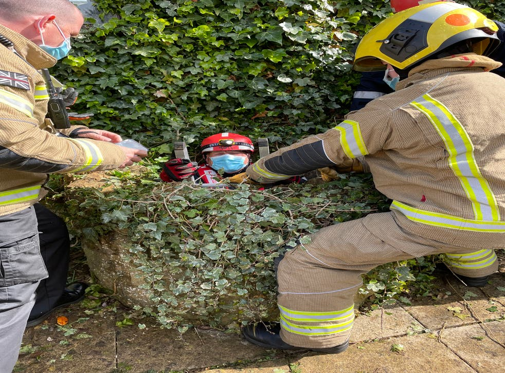 Firefighters rescue a cat from a well