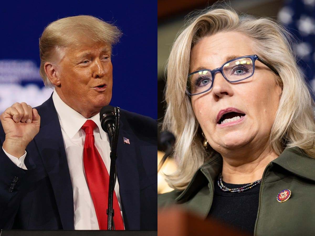 Liz Cheney takes aim at Trump and McCarthy in new op-ed, as ex-president endorses Stefanik to replace her