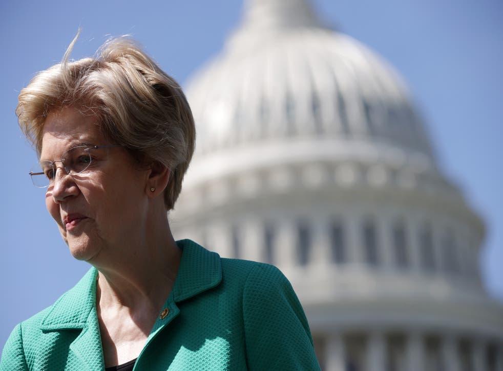 <p>Democratic senator Elizabeth Warren</p>