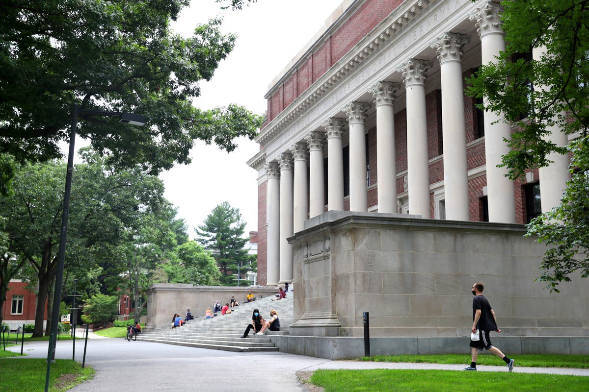 Girl's Harvard admission essay about losing a parent goes viral