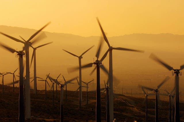 <p>Ex-president Donald Trump issued a statement on Tuesday warning against windmills that 'kill birds, affect the sea, ruin the landscape, and create disasters for navigation'</p>