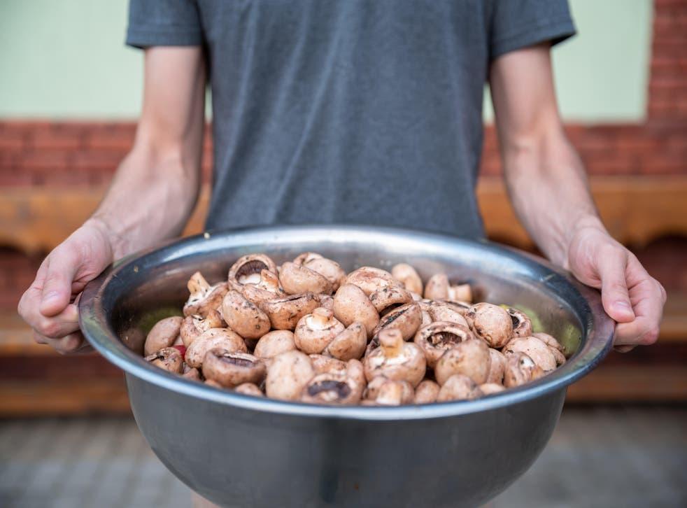 Man holding a big bowl of mushrooms