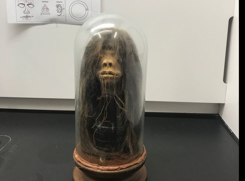 A movie prop used in a 1979 film has been proven to be a real human head after tests done at Mercer University in Georgia.