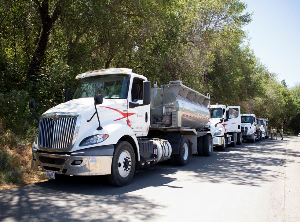 <p>The state plans to truck 17 million salmon to San Francisco Bay this year</p>
