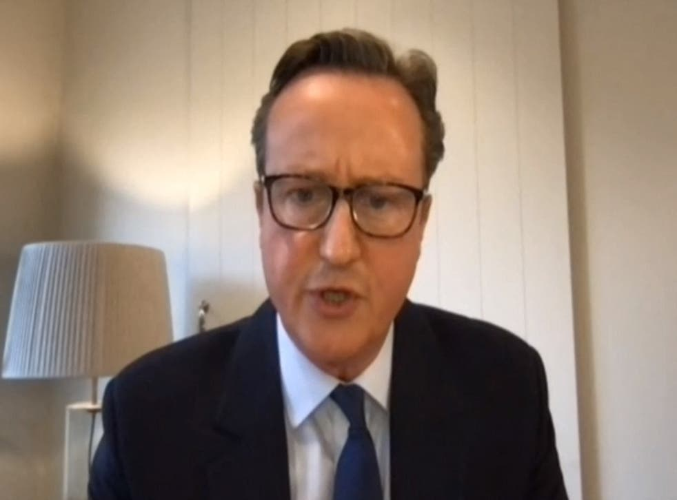 <p>David Cameron giving evidence to the Treasury Committee of MPs on Thursday</p>