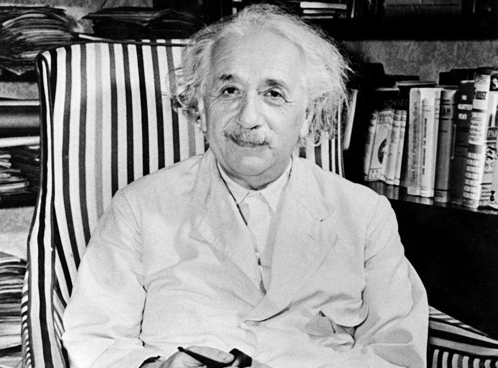 Albert Einstein suggested the study of birds and bees could help physicists understand important scientific processes