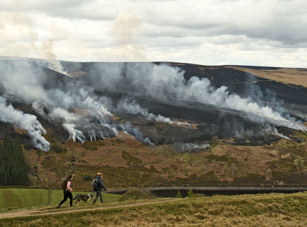 Loopholes in UK's peatland burning policy risk embarrassing the UK ahead of Cop26, campaigners say