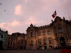 Covid: Peru to officially investigate if bleach can cure coronavirus