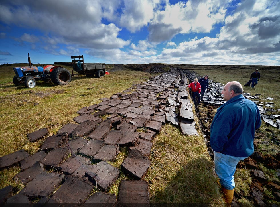 <p>Some 80 per cent of the UK's peatland is considered to be in a degraded state</p>