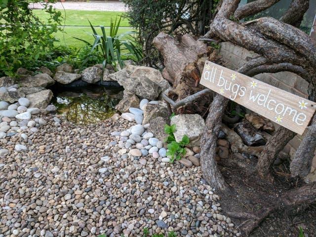 A DIY mini pond (Garden Organic/PA)