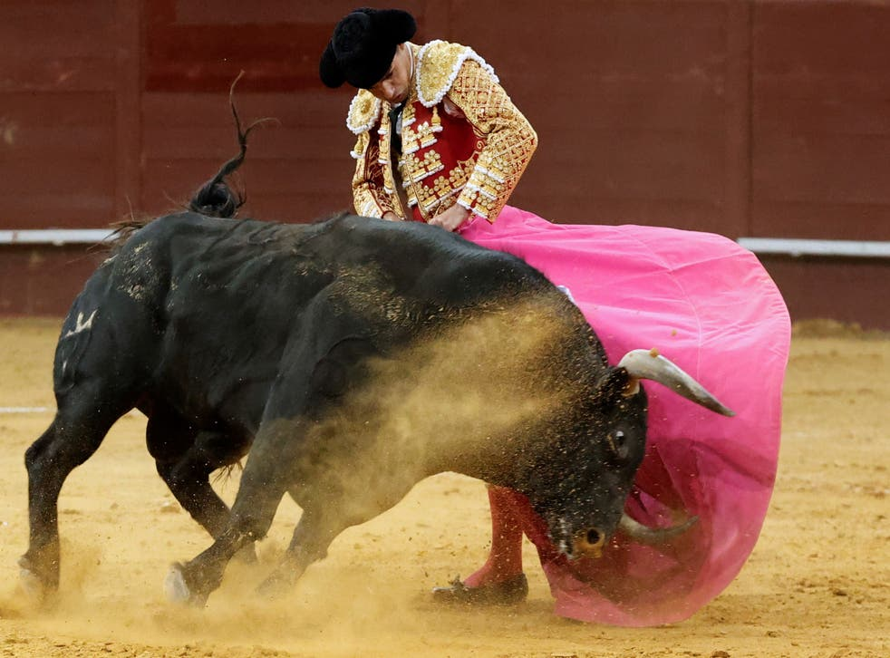 A Spanish bullfighter in action during at Vistalegre bullfighting arena, in Madrid