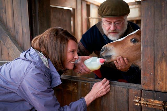 Film Review -Dream Horse