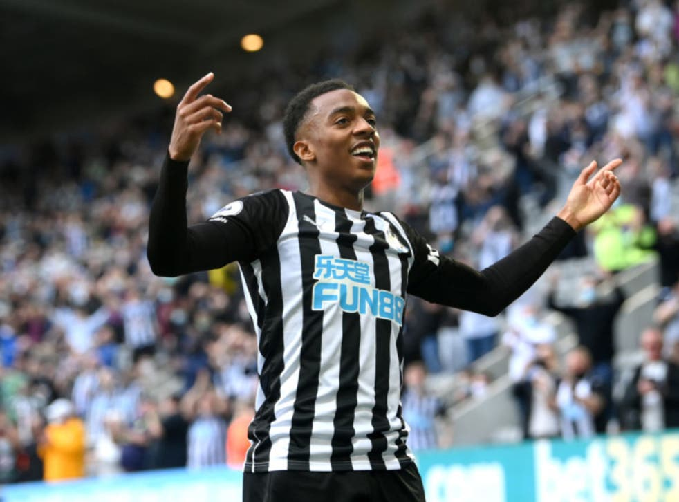 <p>Willock has made a real impression since arriving at Newcastle</p>