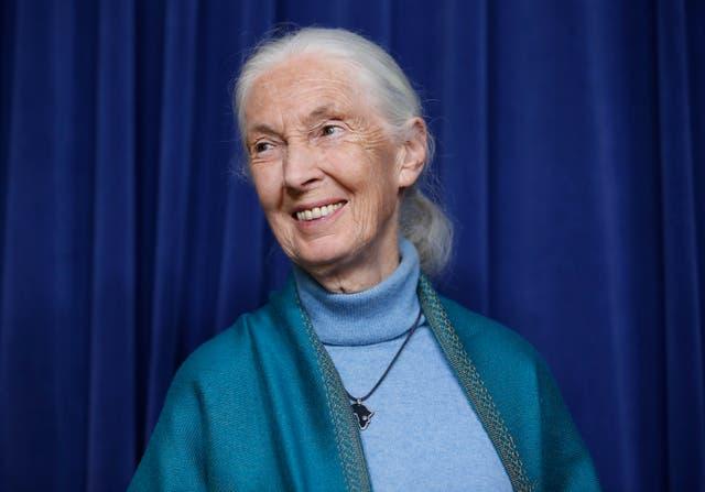 Templeton Prize-Jane Goodall