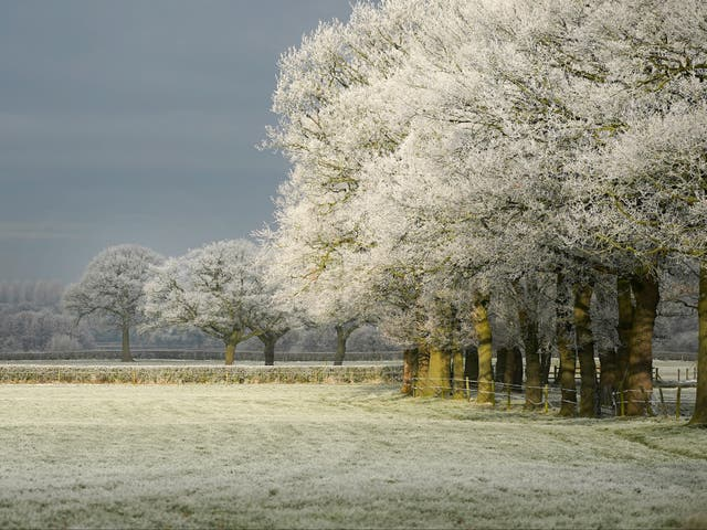Frost is expected to return in northern Scotland just days from the start of meteorological summer
