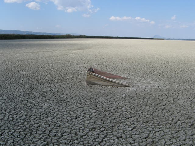 Lake Volvi in Greece temporarily dries up as a consequence of excessive irrigation for agriculture paired with climate change – one of many examples of a freshwater system under human impact