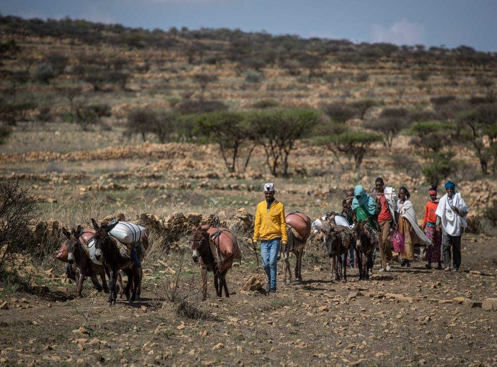 Ethiopia Tigray Eritreans in Charge