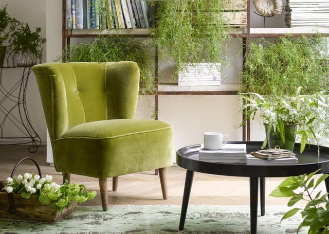 Betty Armchair in Olive from Sofa.com