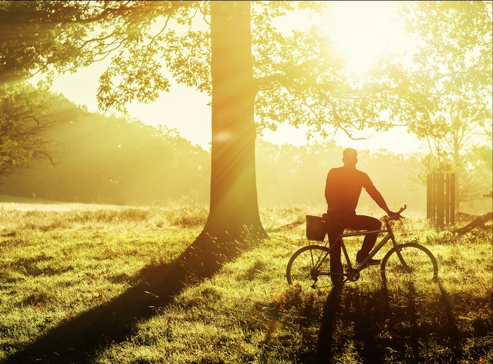<p>Cycle more, love nature, fire up your empathy and put pressure on the government</p>