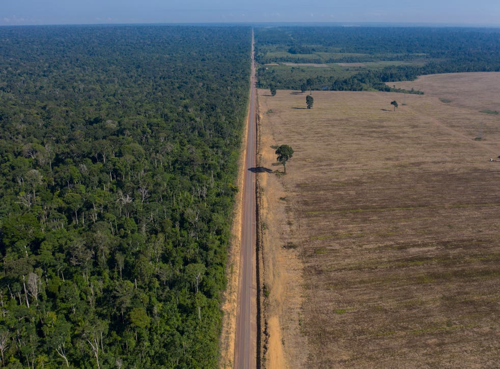BRASIL-AMAZONAS DEFORESTACION