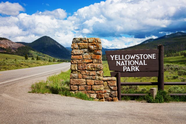 <p>Comedian faces prosecution for hitting a golf ball in Yellowstone</p>