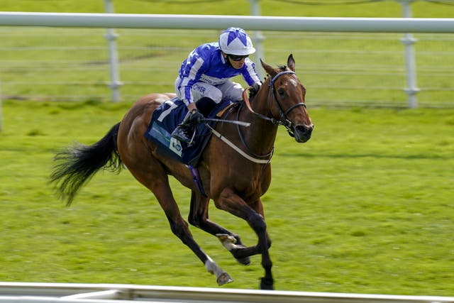 Winter Power is pleasing Tim Easterby as he prepares for Royal Ascot