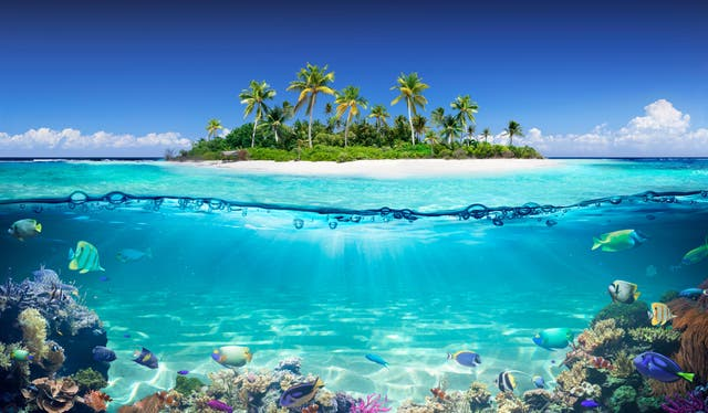 2C1BHY5 Tropical Island And Coral Reef - Split View With Waterline (Alamy/PA)