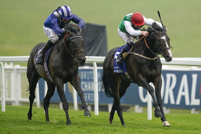 Al Aasy (left) and Pyledriver fought out a thrilling finish to the Coronation Cup