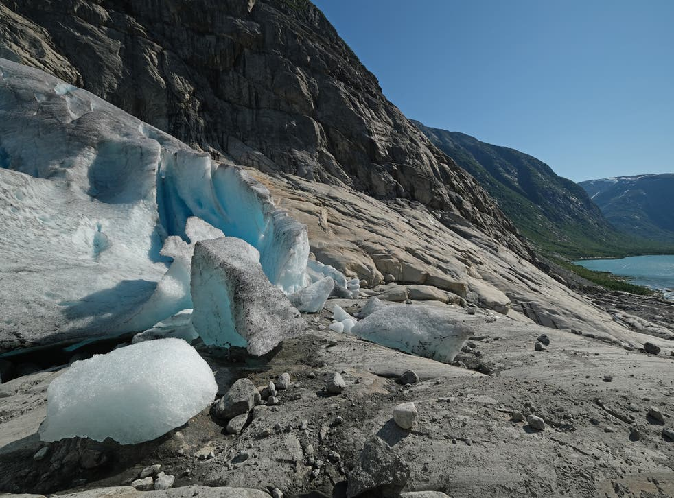 <p>File image: Scientists believe 'glacier blood' could be an indicator of worsening climate crisis </p>
