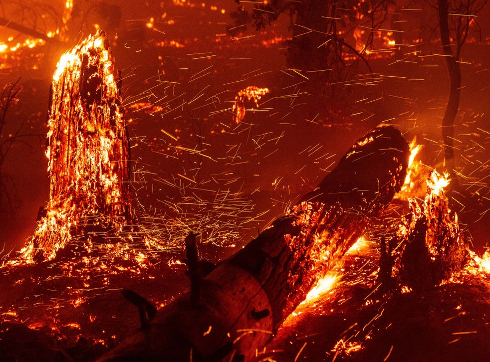 <p>Not the fire in question, but we imagine it looked pretty similar</p>