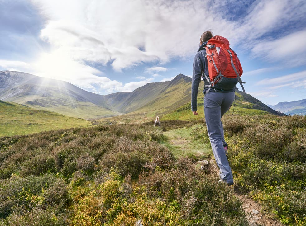 <p>Hiking is also beneficial even for those with pre-existing health conditions and chronic diseases such as dementia, type 2 diabetes</p>