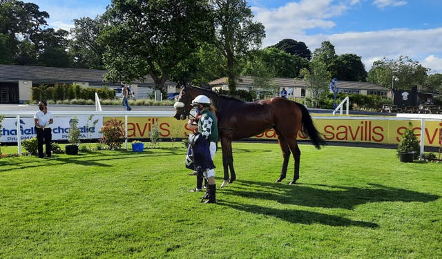 <p>Real Appeal following his Leopardstown win</p>