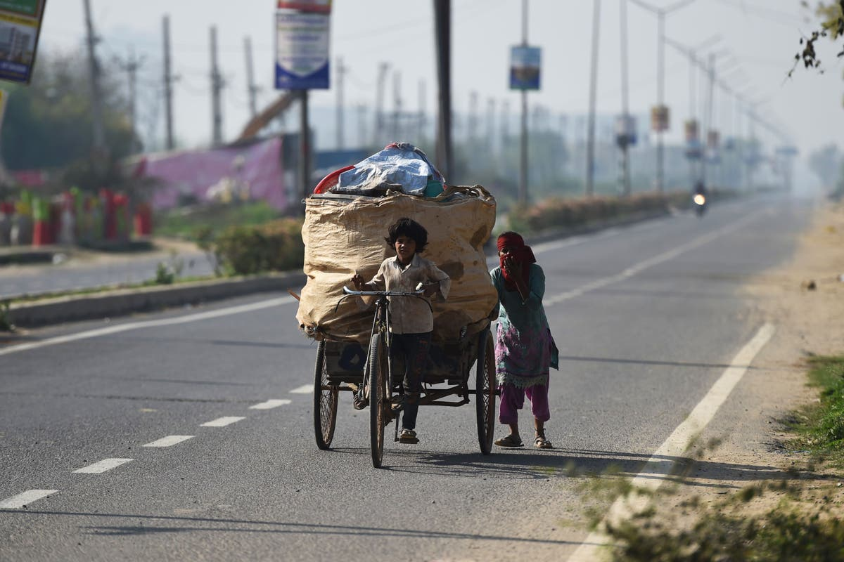 Child labour worsens for first time in 20 years amid pandemic - follow live