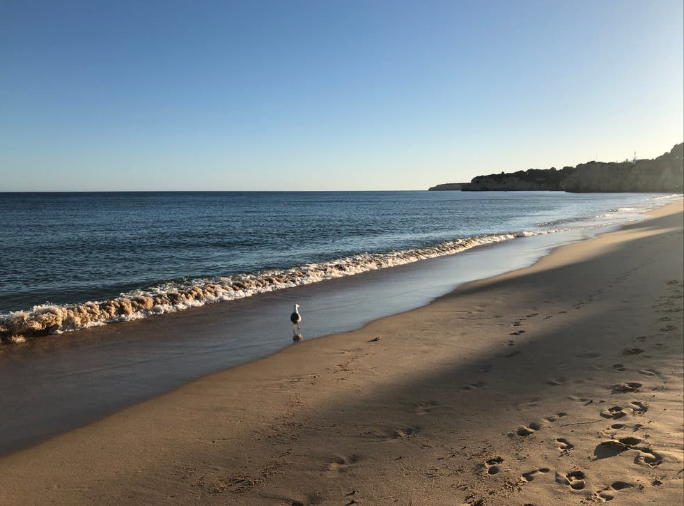 <p>Lonely planet: a beach on the Portuguese Algarve</p>