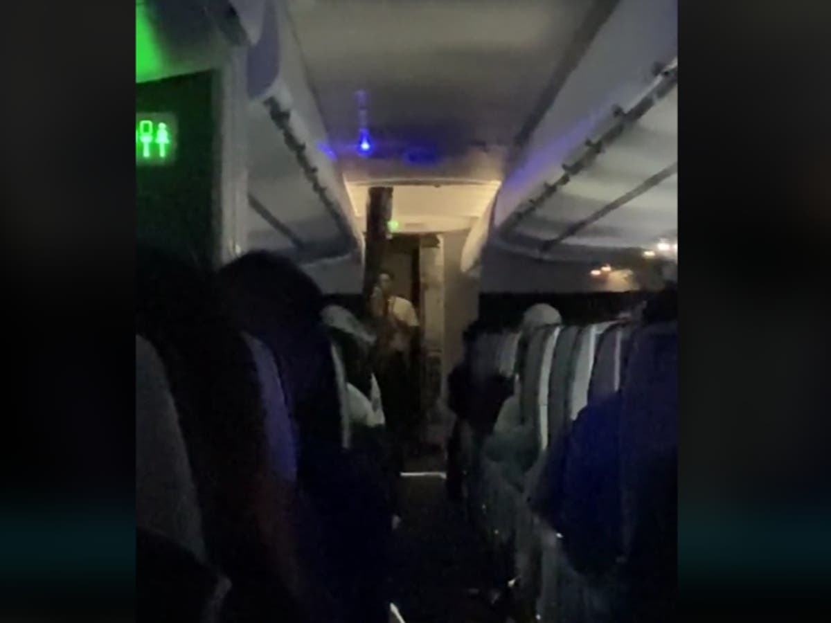 American Airlines attendant scolds passengers over their 'disgusting' behaviour in video