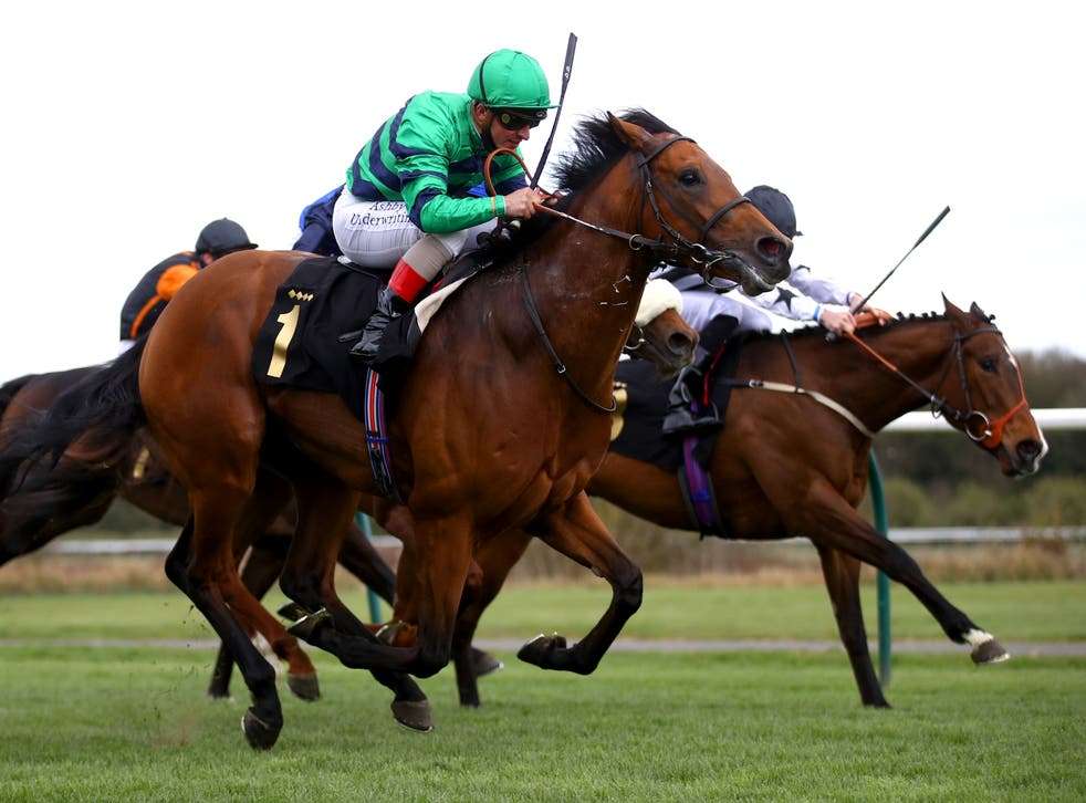 Atalis Bay is an improving sprinter for Marco Botti