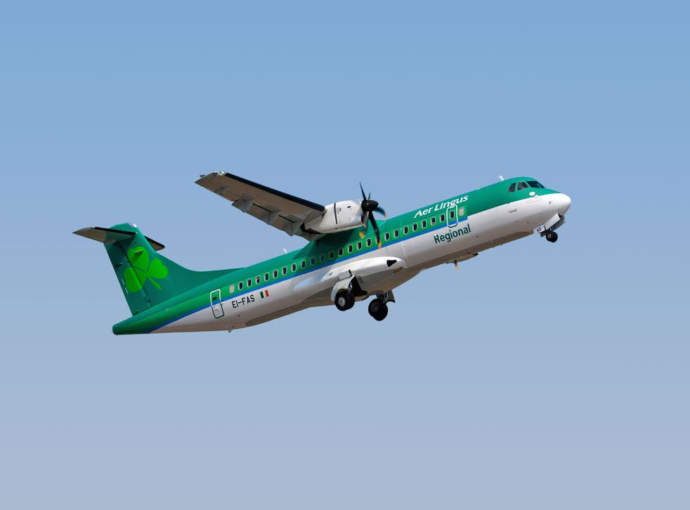 <p>Now departed: Stobart Air plane in the colours of Aer Lingus Regional</p>