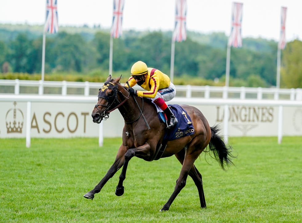 Campanelle is back at Ascot