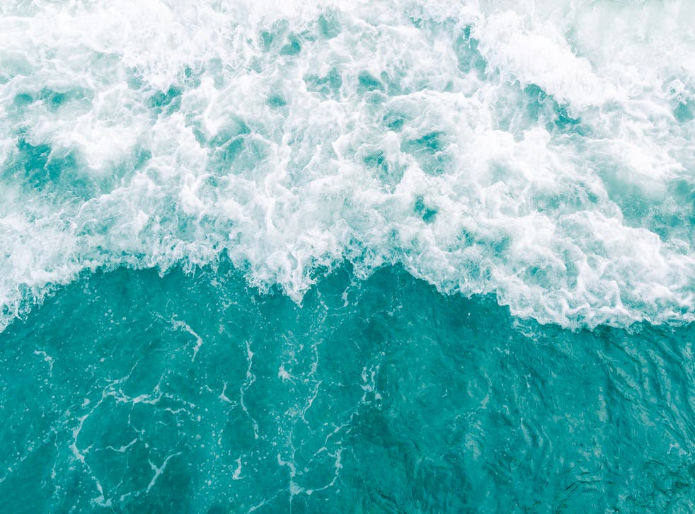 <p>The Covid-19 pandemic offers a unique opportunity to reorient priorities and reset our relationship with the ocean</p>