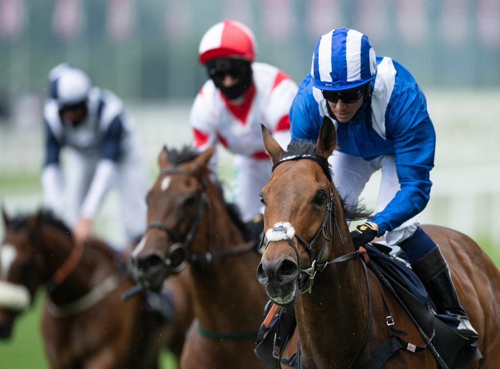 Battaash winning last year's King's Stand Stakes at Royal Ascot