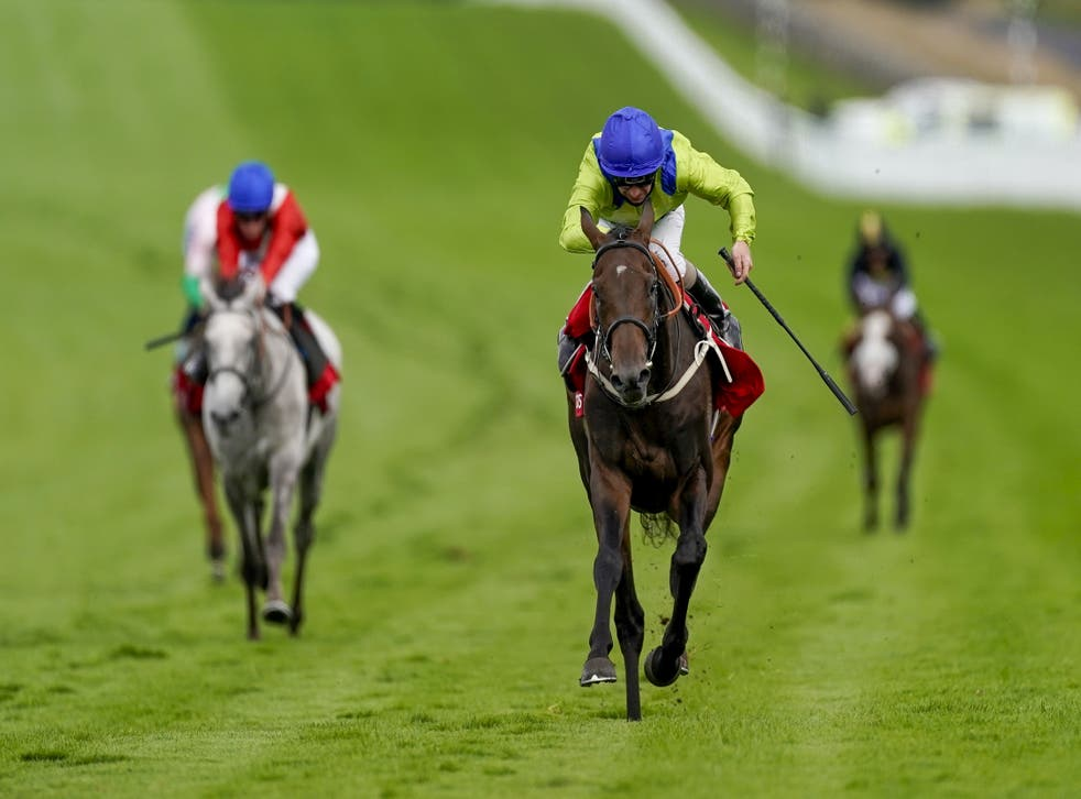 Subjectivist gave connections a scare when falling on the way to the gallops