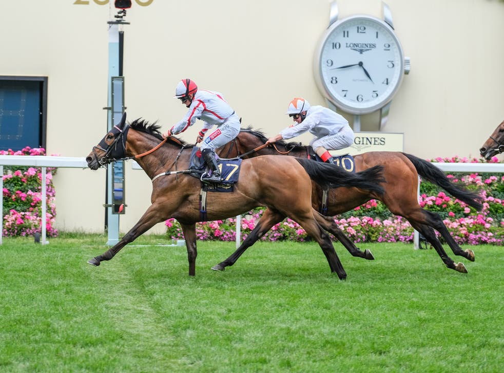 Hollie Doyle is hoping for more Royal Ascot success after opening her account there on Scarlet Dragon last year