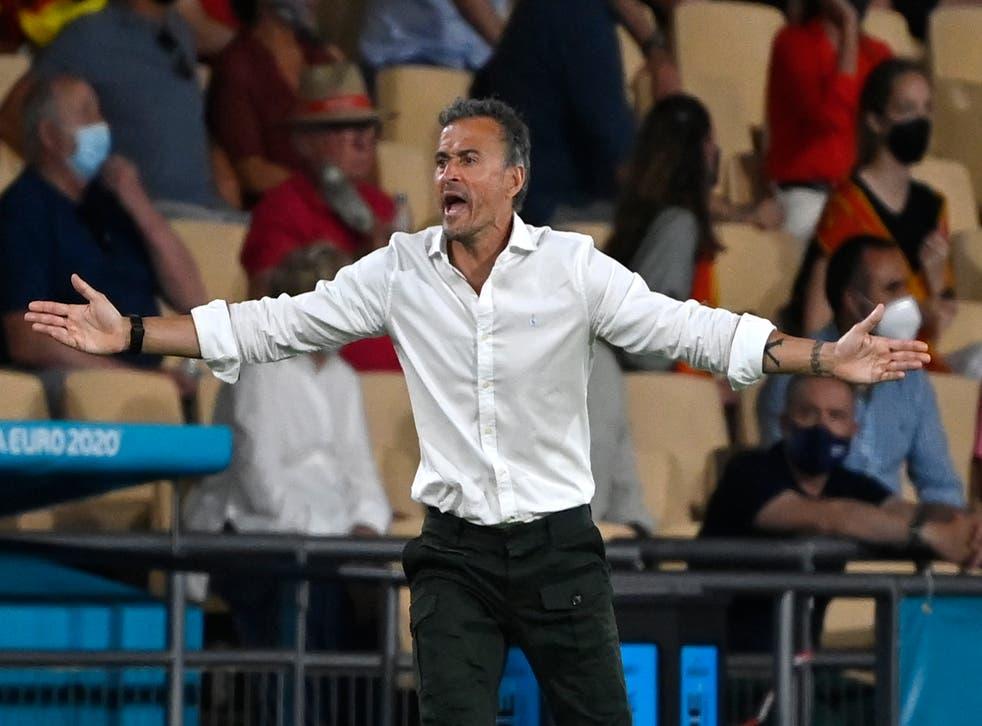<p>Spain manager Luis Enrique gestures</p>