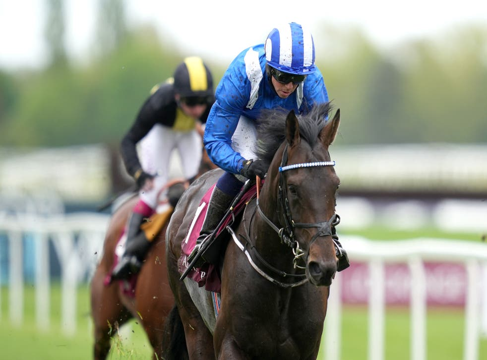 Al Aasy will not be running at Royal Ascot