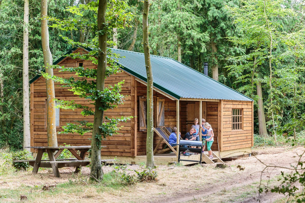 Image Luxury farm camping is the ideal option for a first holiday with a baby