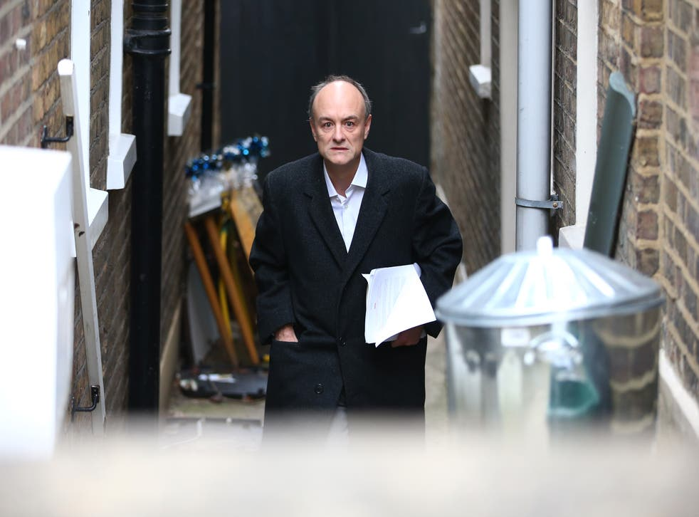 <p>The prime minister's former chief adviser, Dominic Cummings</p>