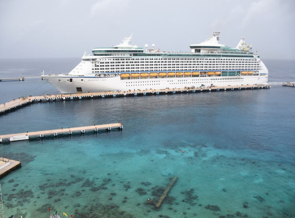 <p>The Royal Caribbean cruise ship 'Adventure of the Seas,' the first cruise to arrive in Mexico since the beginning of Covid-19 pandemic, remains docked in the island of Cozumel, off the coast of Mexico's Quintana Roo State, on 16, June, 2021. </p>