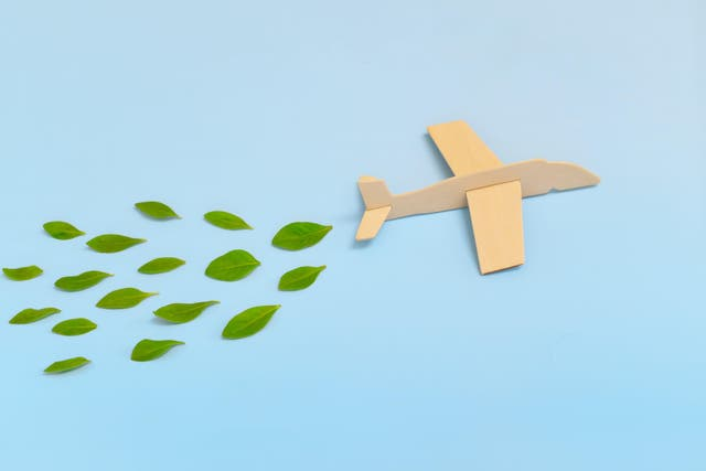 Wooden airplane model emitting fresh green leaves on blue background. Sustainable travel; clean and green energy; and biofuel for aviation industry (Alamy/PA)