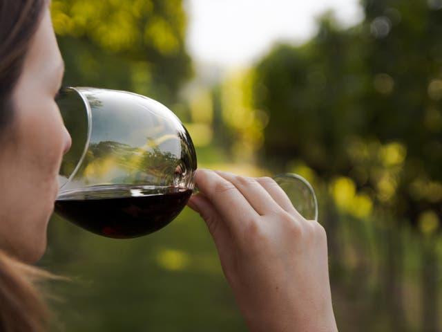 <p>Woman drinks wine </p>