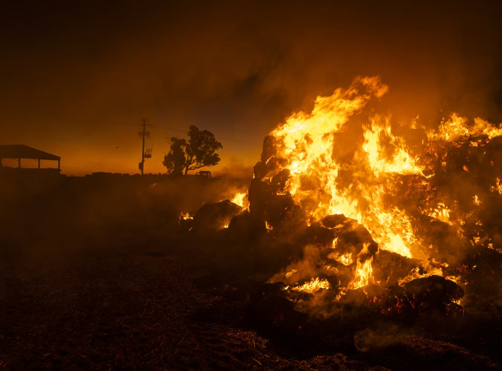 <p>Farmer Greg Younghusband burns approximately 130 bales of hay that have been destroyed by mice near Gilgandra, New South Wales, Australia on 26 May 2021</p>